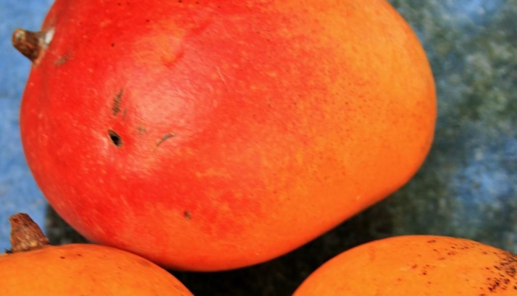 orange-mango-280973_1920